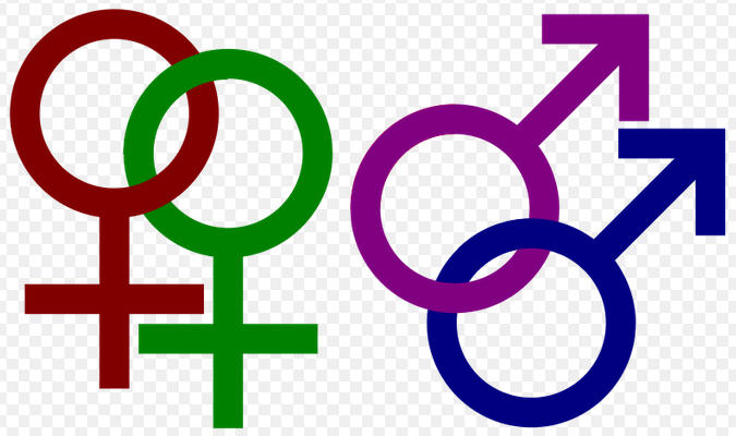 Gay and lesbian spectrum usi